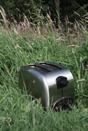 toaster in nature